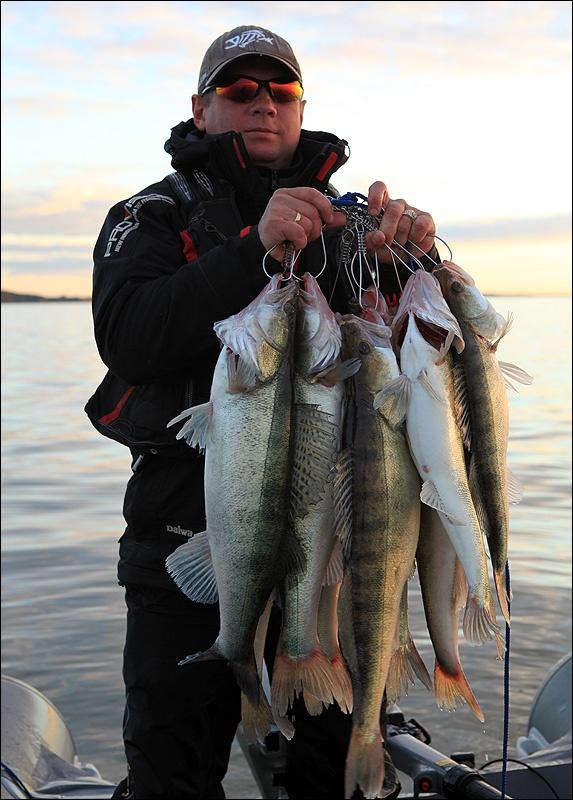 отчеты о рыбалке в калининградской области сегодня