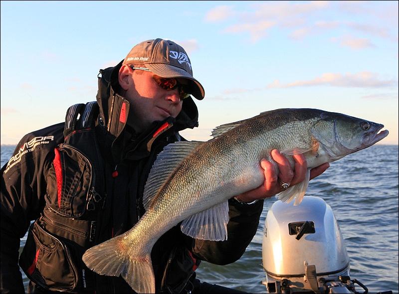 рыбалка в калининградской области на судака