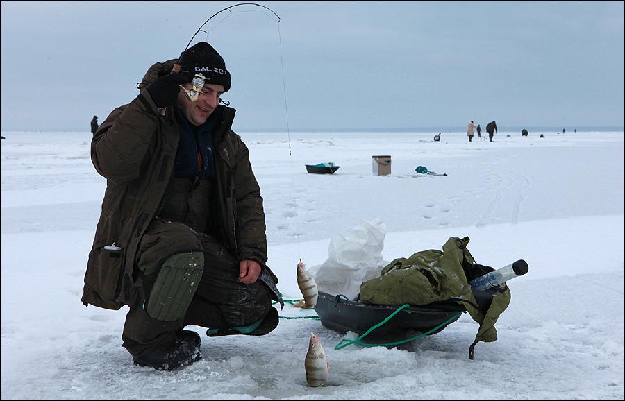 рыбалка куршского залива