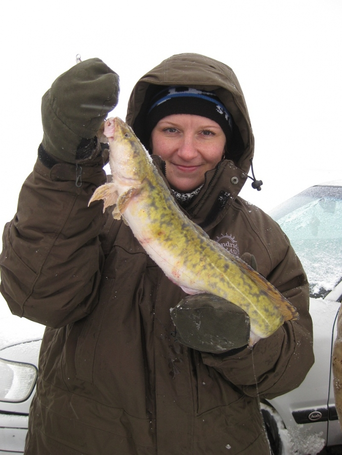 запрет получай рыбалку в реке луга