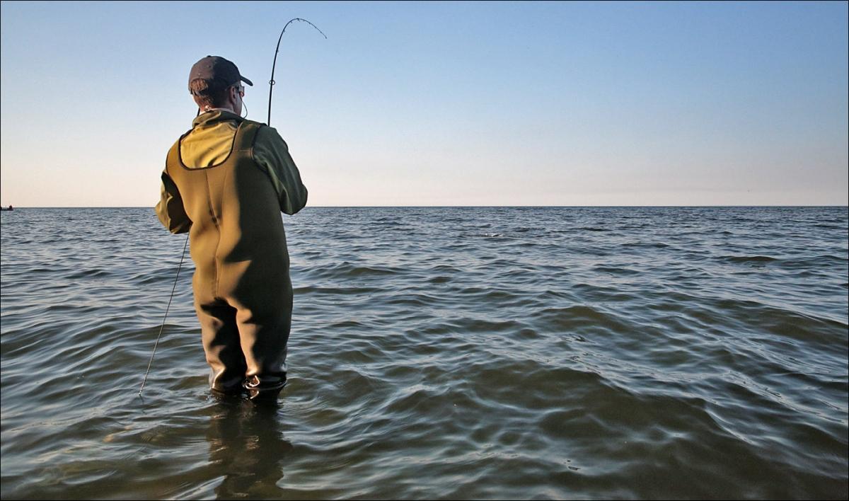 рыболовная снасть смерть толстолобика